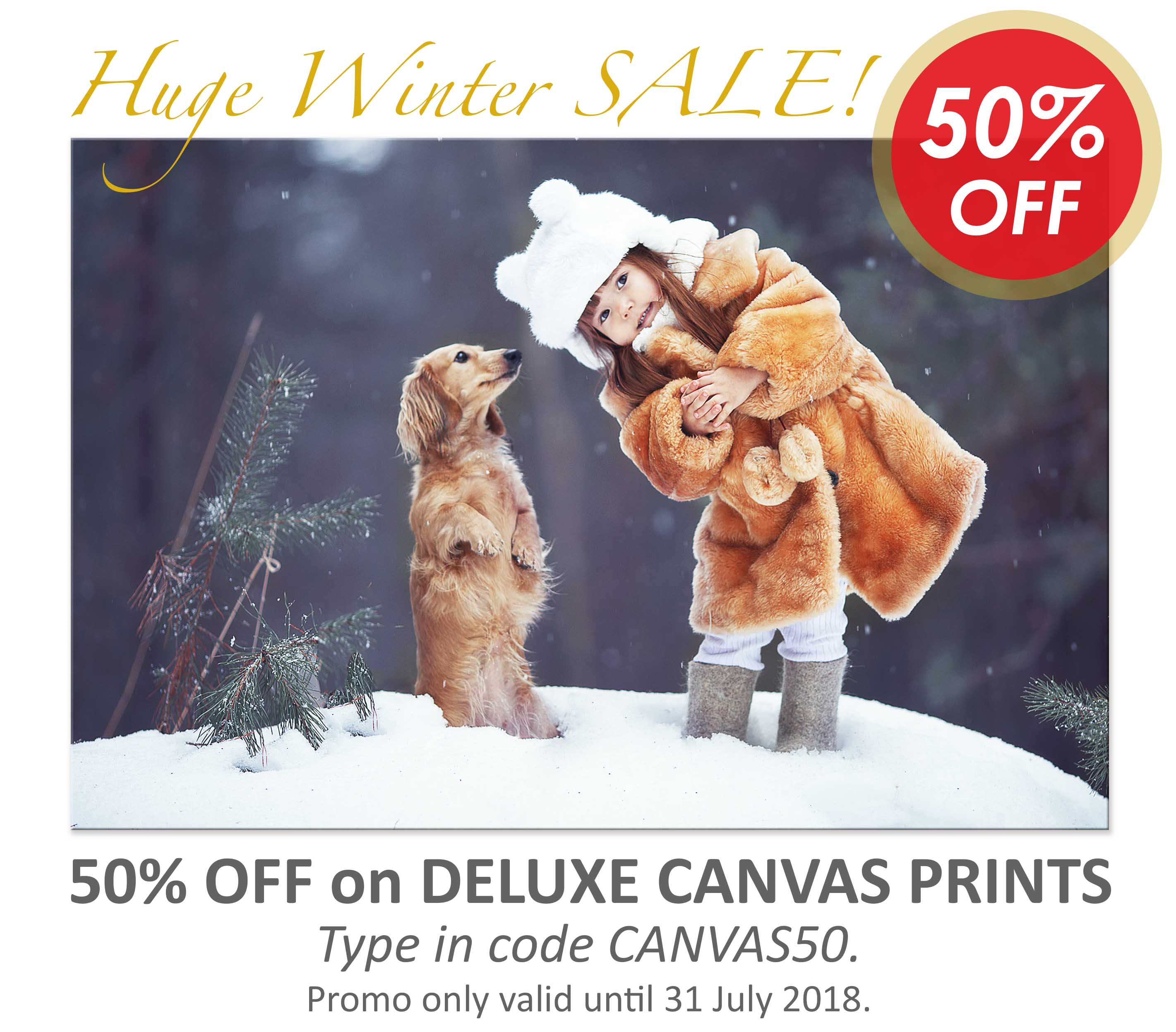 Deluxe Art Canvas Printing Winter Sale 50 OFF